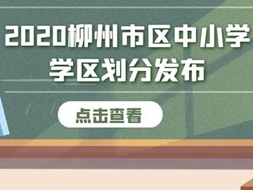 2020年柳州市区中小学学区划分